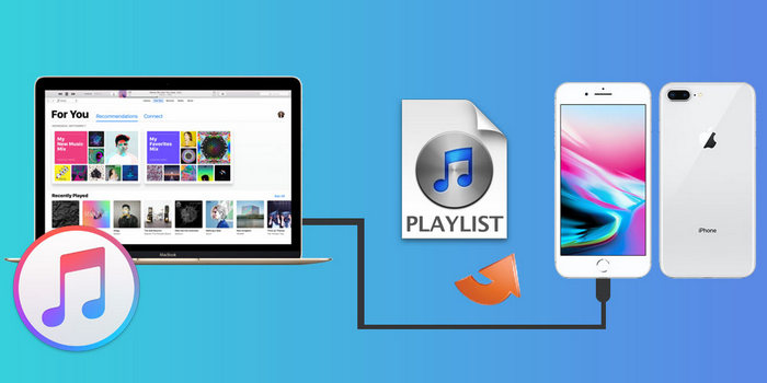 Übertragen Sie iTunes Playlists auf iPhone 8