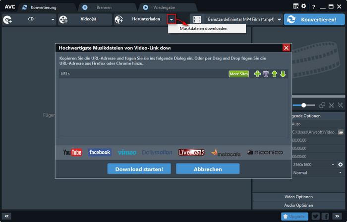 Musik mit Any Video Converter herunterladen